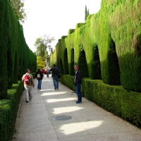 Andaluzie 068